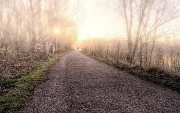 Фото обои дорога, пейзаж, туман, забор, утро