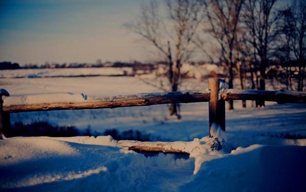 Фото обои зима, снег, деревья, природа, забор, мороз, сугробы