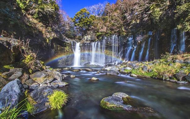 Фото обои лес, река, камни, водопад, радуга, джунгли
