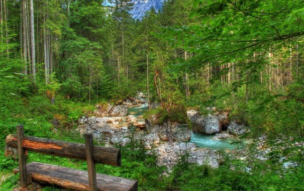 Фото обои лес, деревья, скамейка, парк, река, ручей, камни