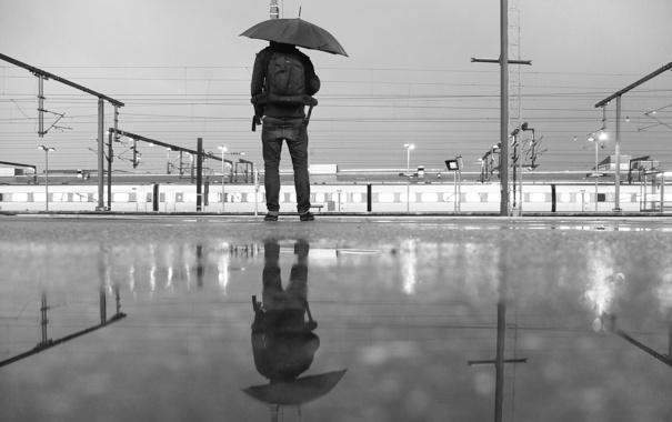 Фото обои отражение, спина, джинсы, зонт, зеркало, лужа, мужчина