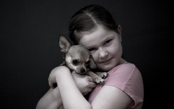 Фото обои настроение, собака, девочка