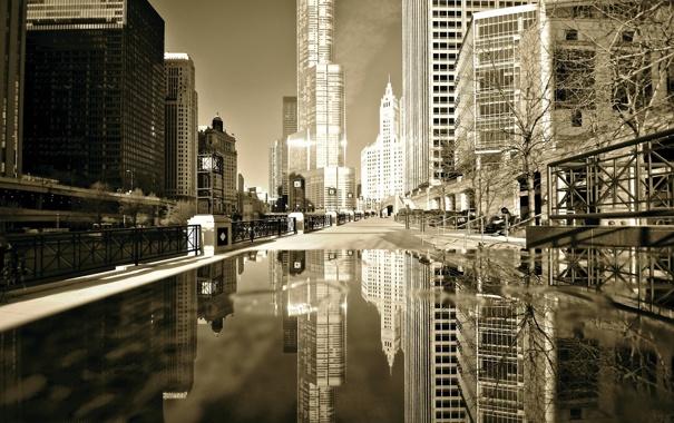 Фото обои осень, отражение, здания, небоскребы, лужа, америка, чикаго