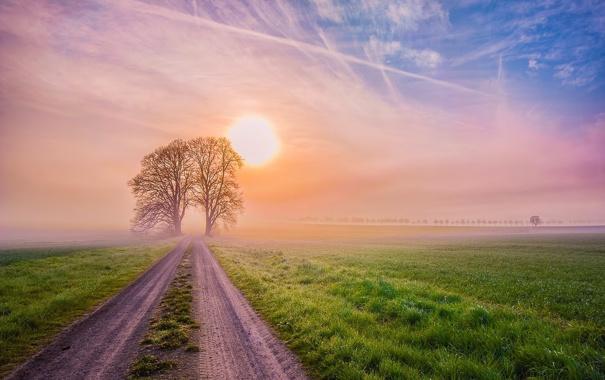 Фото обои дорога, солнце, пейзаж, закат, природа, туман, фото