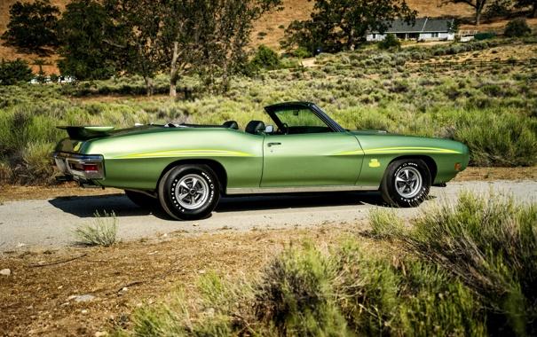 Фото обои Pontiac, GTO, 1970, понтиак, Convertible, Ram Air III, The Judge