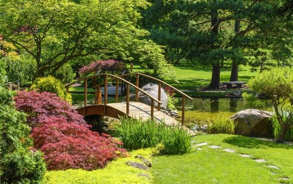 Фото обои камни, пруд, трава, лавочка, кусты, деревья, мостик