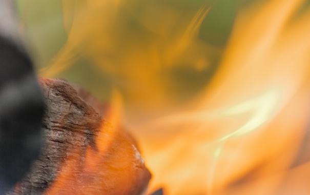 Фото обои макро, огонь, пламя, кастер, уголек