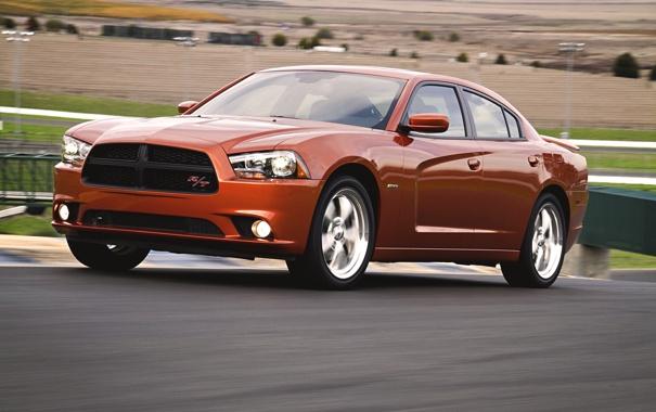 Фото обои оранжевый, Авто, Машина, Додж, Асфальт, Капот, Dodge