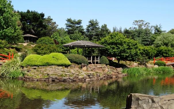 Фото обои деревья, пруд, камни, сад, Австралия, мостики, кусты