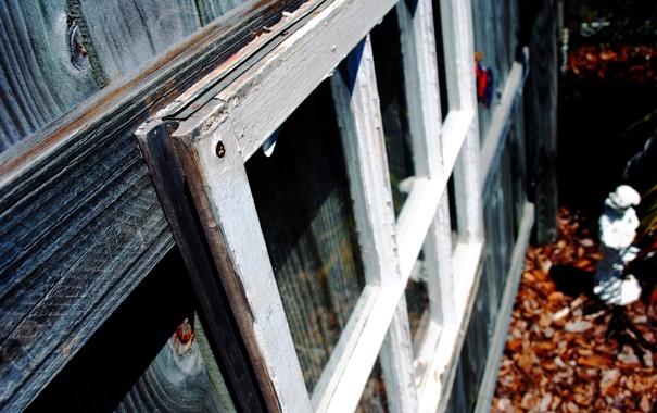 Фото обои glass, wood, window