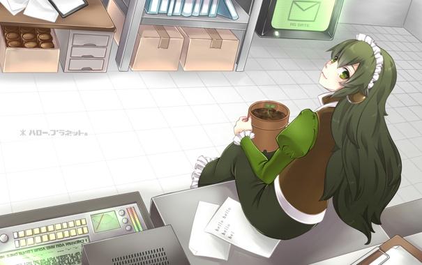 Фото обои девушка, растение, росток, арт, склад, горшок, сидя