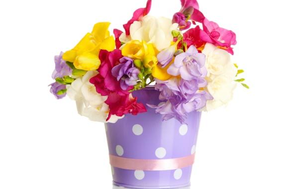 Фото обои цветы, букет, ведро, лента