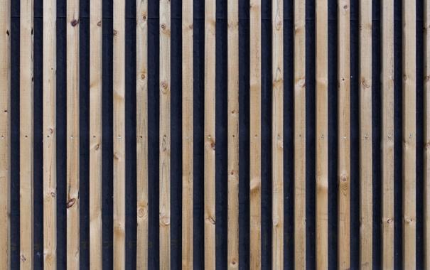 Фото обои wood, blue, screws