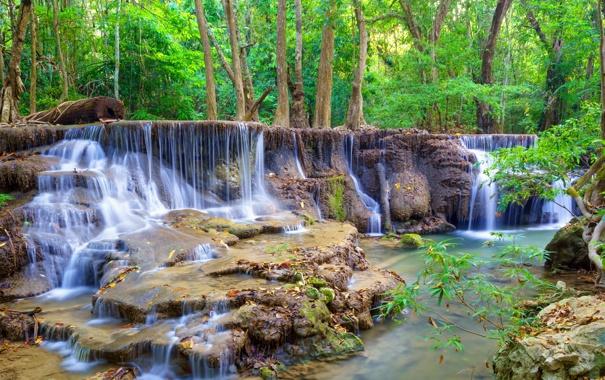 Фото обои landscape, камни, лес, waterfall, stones, водопад, forest