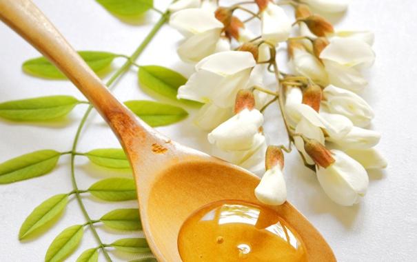 Фото обои цветы, ветка, мед, ложка, сладости, white, белые