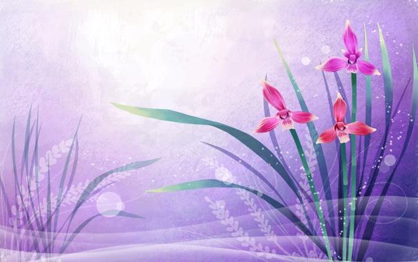 Фото обои листья, свет, обои, рисунок, лепестки, открытка, аппликация