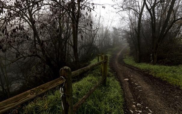 Фото обои дорога, осень, забор