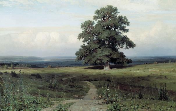Фото обои природа, пейзажи, Шишкин