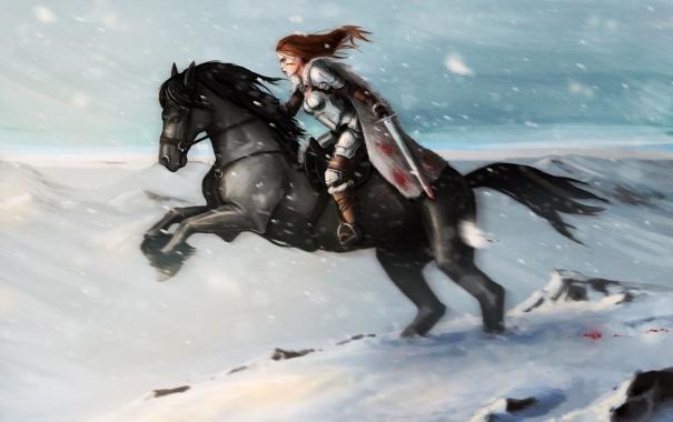 Фото обои девушка, снег, горы, оружие, конь, кровь, лошадь