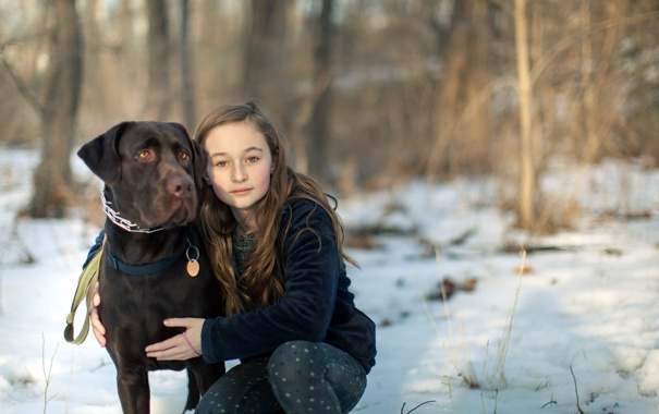 Фото обои собака, настроение, девочка
