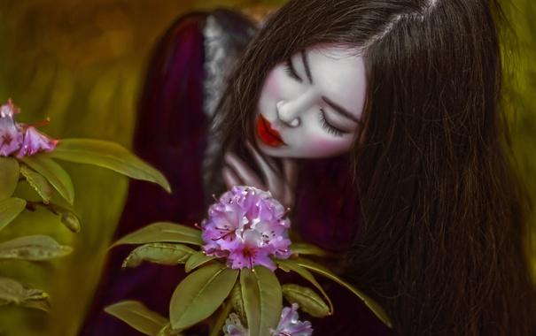 Фото обои девушка, фантазия, цвет, макияж, арт, Agnieszka Lorek, Lillian Liu