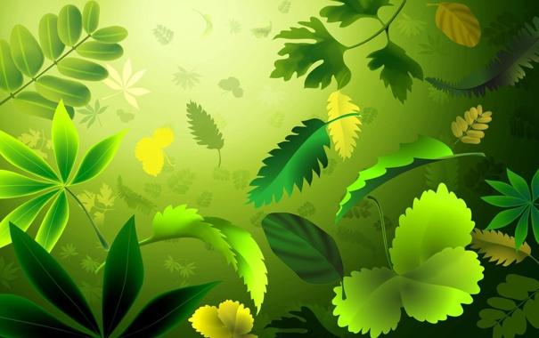 Фото обои трава, листья, ветки