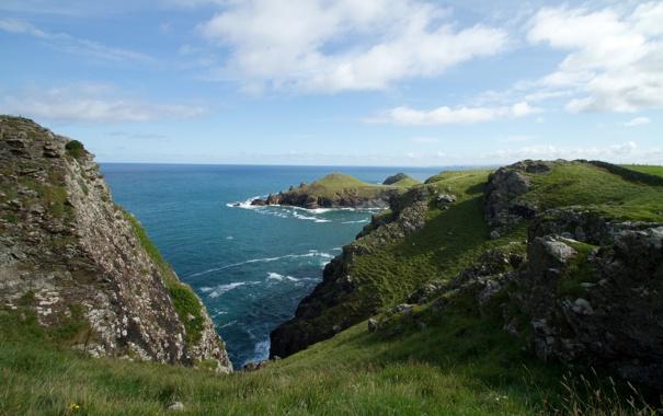 Фото обои море, небо, трава, берег, горизонт