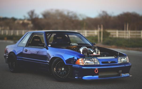 Фото обои mustang, мустанг, ford, форд