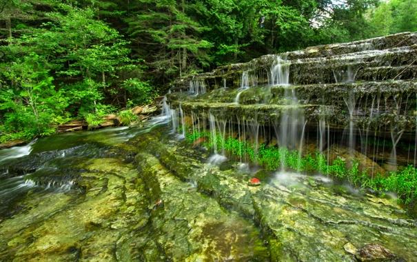 Фото водопад камни лес природа фото