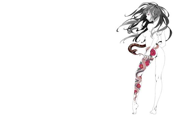 Фото обои девушка, узор, змея, тату, арт, белый фон, kansou hada