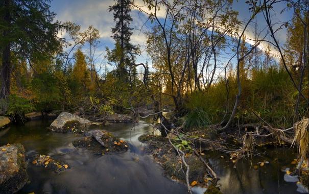 Фото обои осень, заполярье, мончегорск
