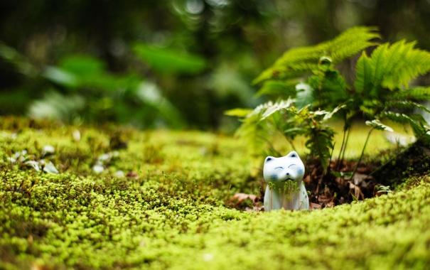 Фото обои зелень, кошка, ростки, статуэтка