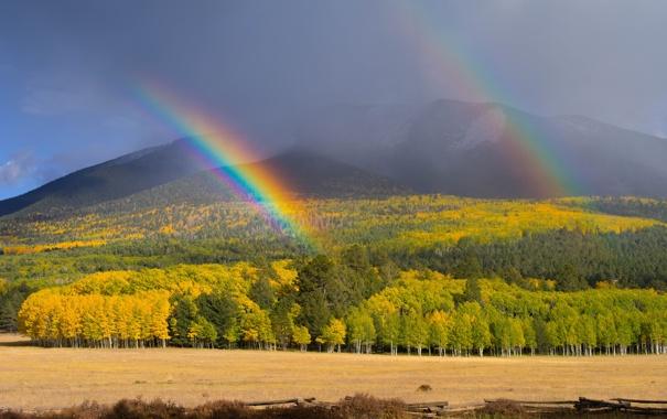 Фото обои осень, лес, небо, облака, горы, радуга