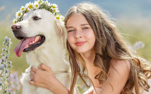 Фото обои взгляд, цветы, улыбка, собака, девочка, шатенка, венок