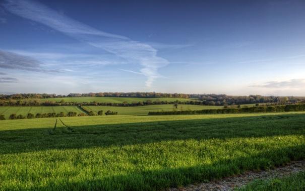 Фото обои поле, облака, деревья, англия, тени