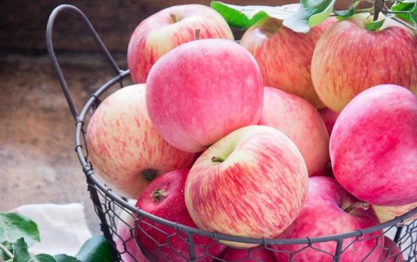 Фото обои яблоки, фрукты, аппетитный