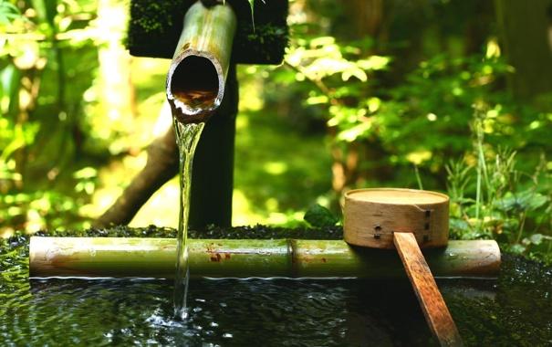 Фото обои зелень, вода, камень, ковш, японский сад, бамбуковый, тсукубаи