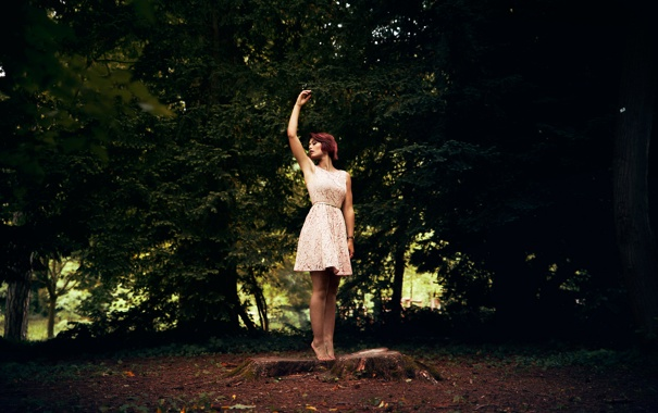 Фото обои лес, девушка, движение, пень