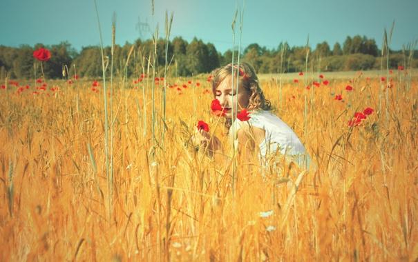 Фото обои поле, лето, небо, девушка, солнце, цветы, природа