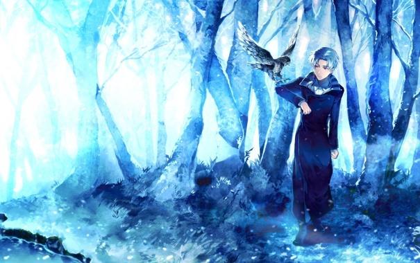 Фото обои лес, деревья, птица, арт, парень, sunakumo