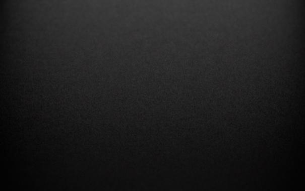Фото обои черный, шерсть, тектсура