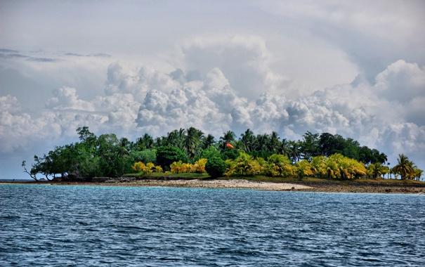 Фото обои море, деревья, пальмы, островок.