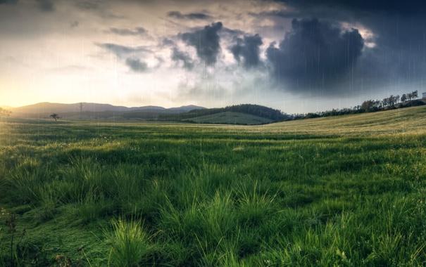 Фото обои небо, трава, солнце, облака, закат, холмы