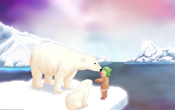Фото обои снег, аниме, белый медведь, полюс, умка