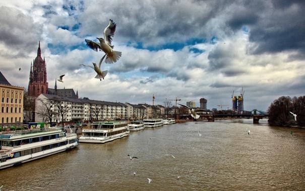 Фото обои небо, облака, мост, река, птица, корабль, дома