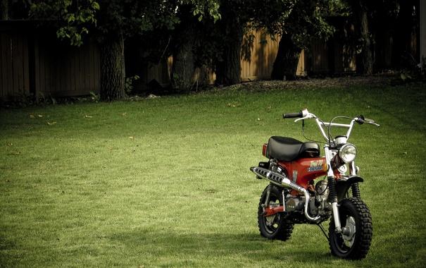 Фото обои трава, деревья, забор, мотоцикл, 2560x1600