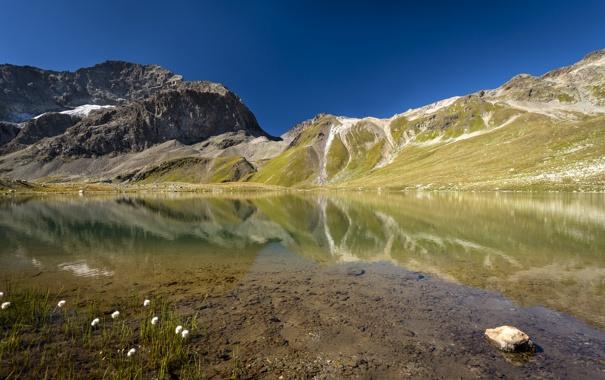 Фото обои вода, цветы, горы, озеро, гладь, отражение, камни
