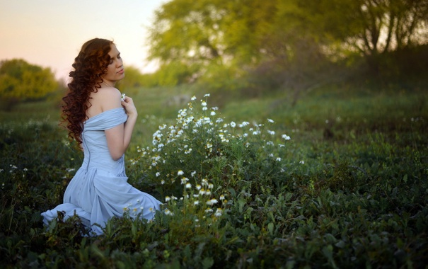 Фото обои поле, девушка, ромашки