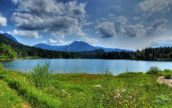 Фото обои трава, пейзаж, горы, природа, река, фото, Германия