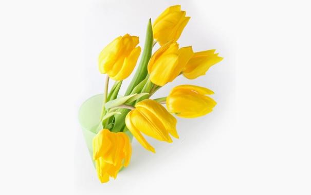 Фото обои букет, желтые, тюльпаны, белый фон, ваза